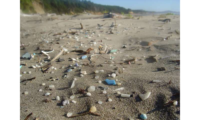Ocean microplastics pop up on south-west beaches