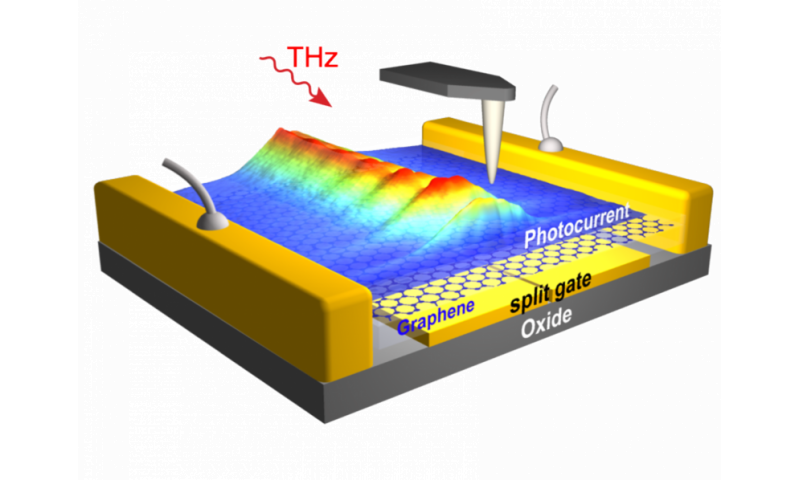 On-chip observation of THz graphene plasmons