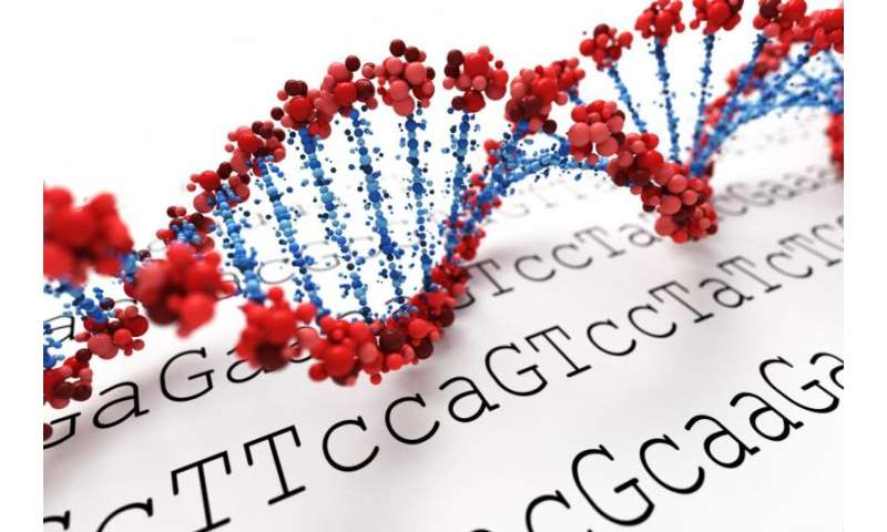 Overweight affects DNA methylation