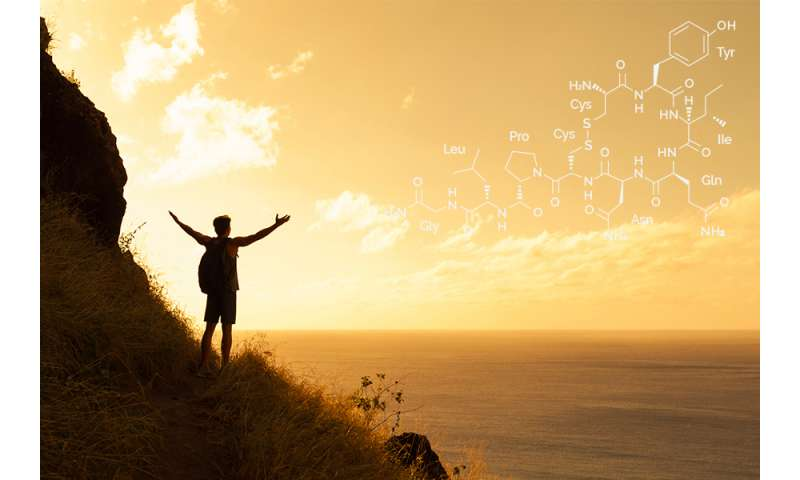 Oxytocin enhances spirituality, new study says