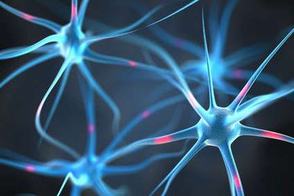 Pain-initiating function of glial cells identified for the first time