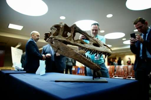 People take pictures of Mongolian fossils before a Repatriation ceremony in New York on April 5, 2016