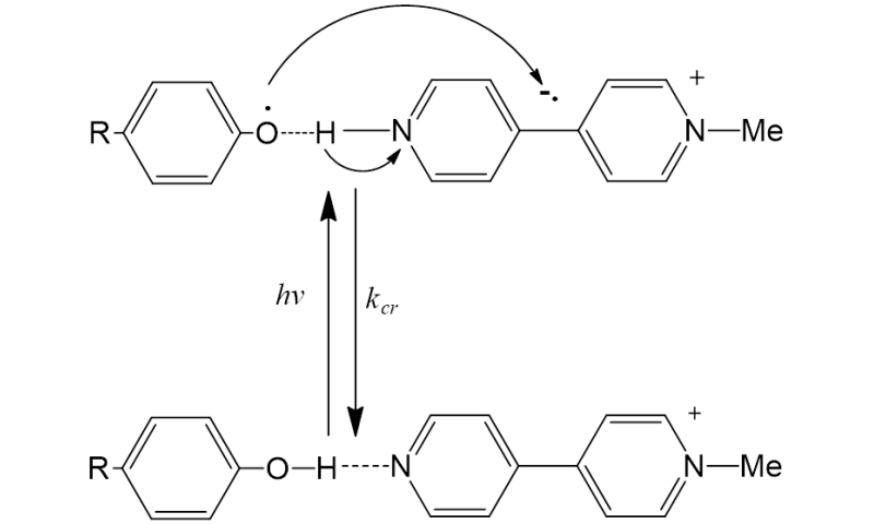 Photo electron proton transfer