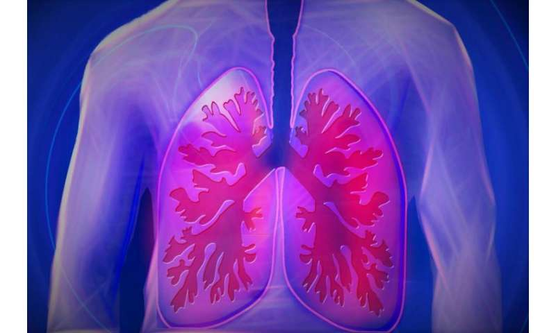 Physical therapy treatment proves to notably improve quality of life of COPD patients