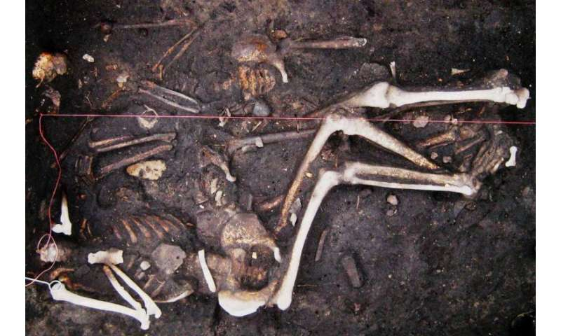 Plague may have persisted in Europe during 300-year period, including 'Black Death'