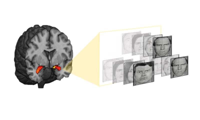 Poverty marks a gene, predicting depression