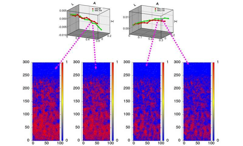 Progress of simulating dynamics in heterogeneous materials