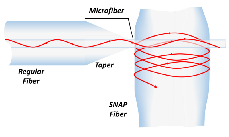Propagation of light wave in a SNAP fiber