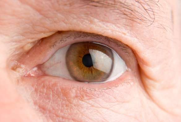 Protein that promotes 'cell-suicide' could revolutionise eye cancer treatment