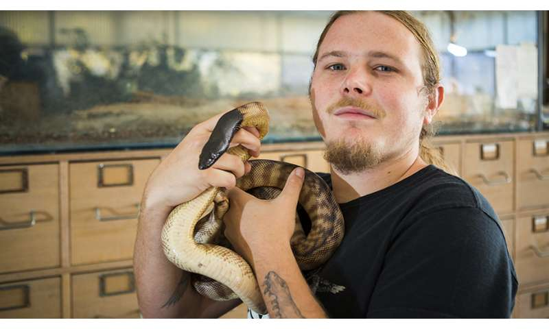 Pythons and boas shed new light on reptile evolution
