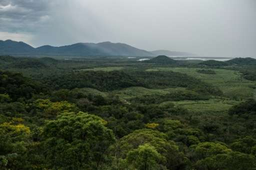 Ranchers and settlers in the remotest reaches of northwestern Brazil are voraciously cutting down rainforest to farm crops, encr