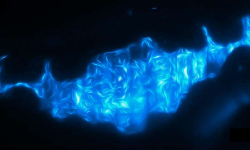 Real-time imaging of fish gut ties bacterial competition to gut movements