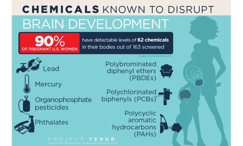 A Host Of Common Chemicals Endanger >> A Host Of Common Chemicals Endanger Child Brain Development Report Says