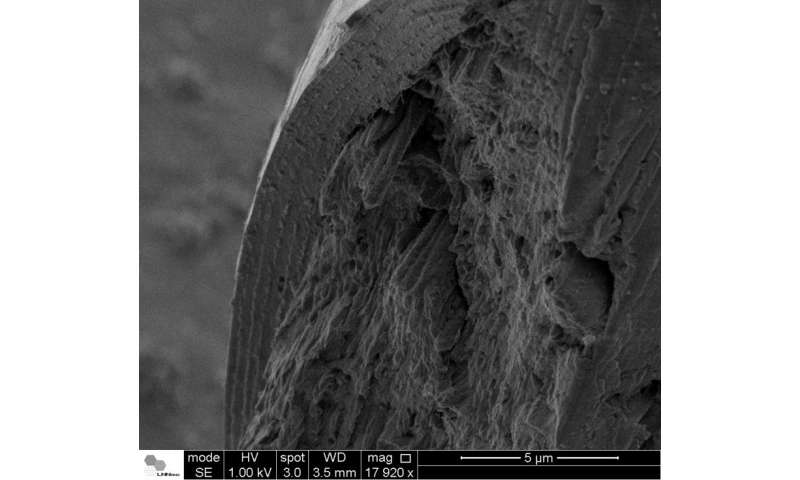 Research leads to new discoveries about structure of human hair