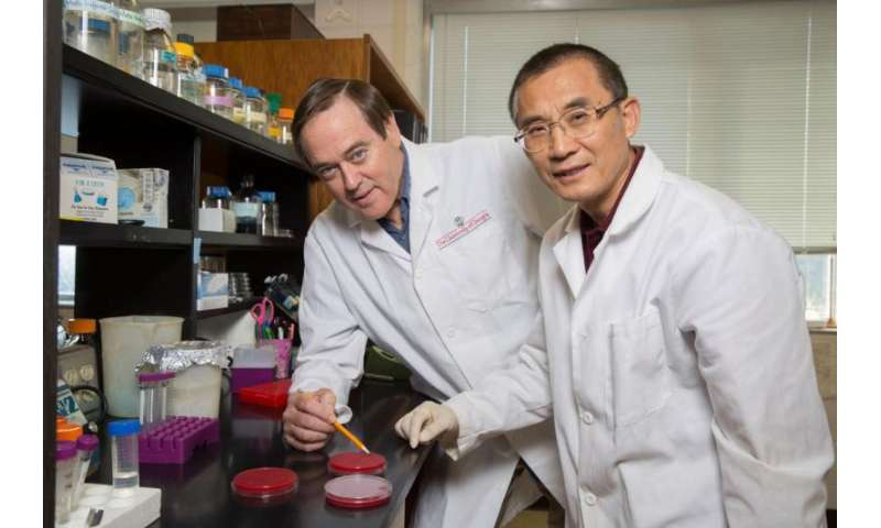 Research on common bacterium opens door to fighting gastric cancer