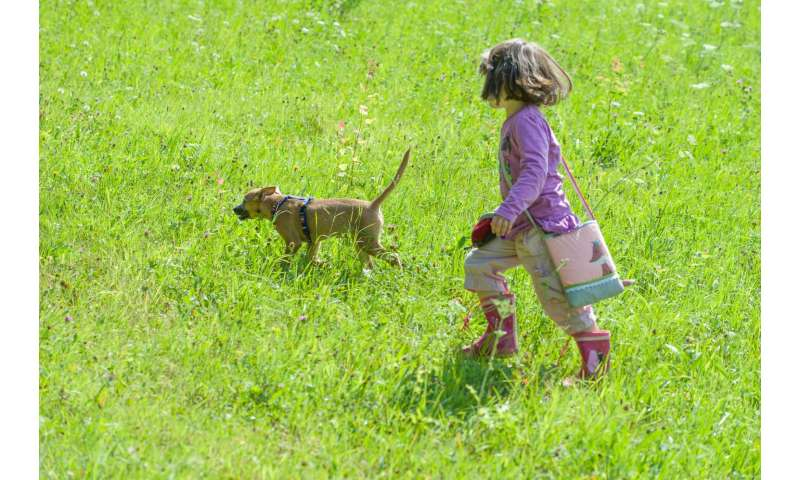Risk to small children from family dog often underestimated