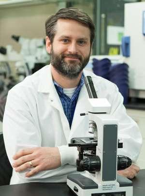 Scientist models Smith-Lemli-Opitz syndrome in adult stem cells