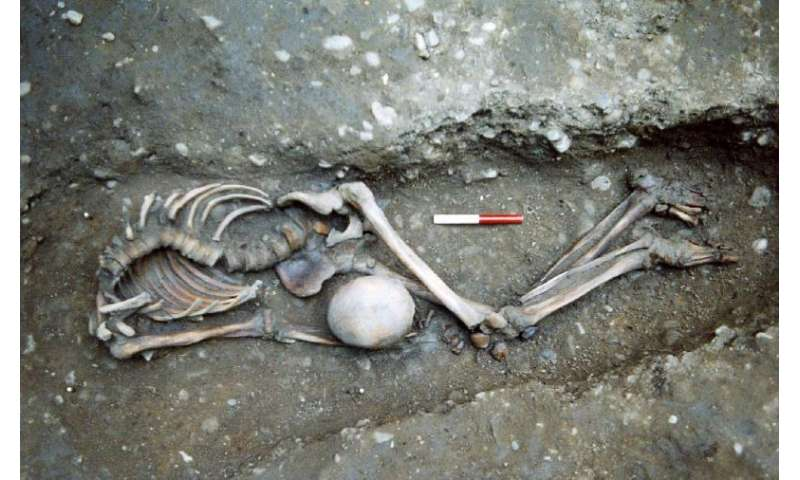 """Scientists sequence ancient British """"gladiator"""" genomes from Roman York"""