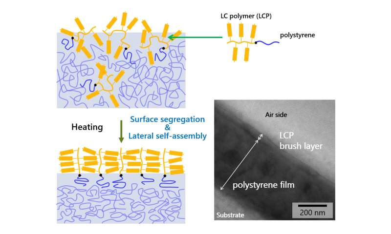 Self-assembly of photoresponsive polymer brushes to realize advanced surfaces