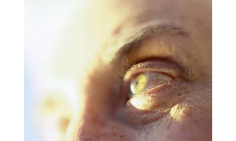 Self-care tools cut depression in AMD, diabetic retinopathy