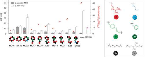Sequence-defined bioactive macrocycle can be tailored for drug design