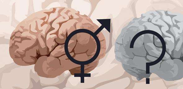 Gender similarities and differences in sexuality