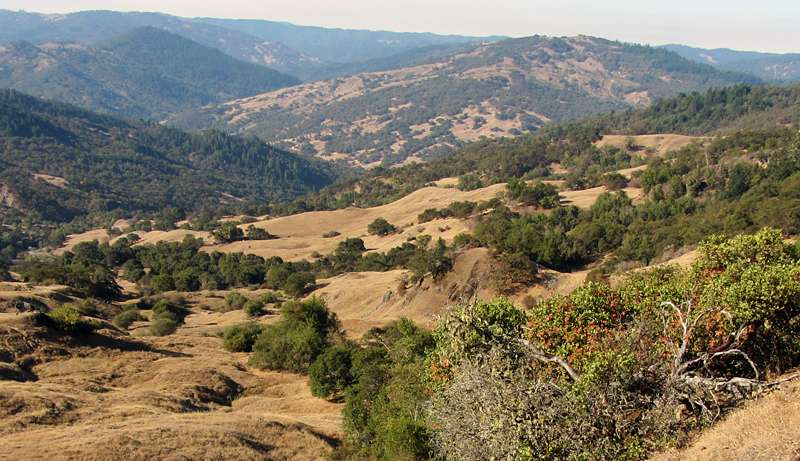 Slowing of landslide flows reflects California's drying climate