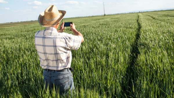 Smartphones and cloud computing the key to farmers' future