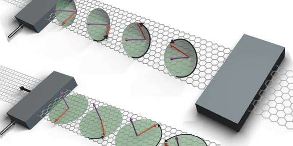 Spin lifetime anisotropy of graphene is much weaker than previously reported