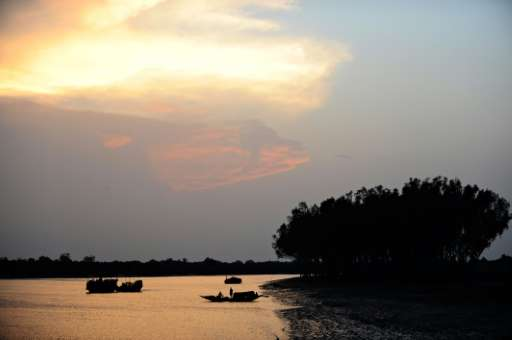 Spread over 10,000 square kilometres (3,900 square miles), the Sundarbans is the world's largest mangrove forest and the core pa