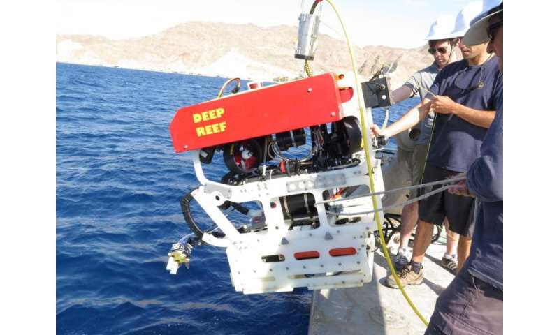 'Squishy' robot fingers aid deep sea exploration