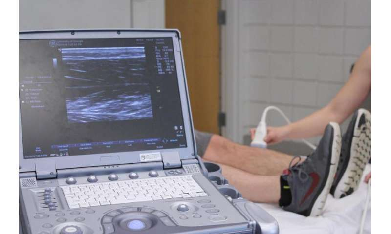 Study finds ultrasound is reliable, inexpensive way to measure health
