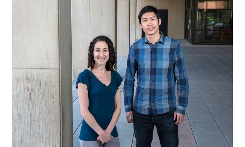 Study links parental depression to brain changes and risk-taking in adolescents