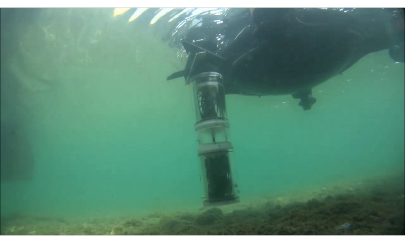 Subcultron project in the Venice lagoon - Courtesy of University of Graz, Austria