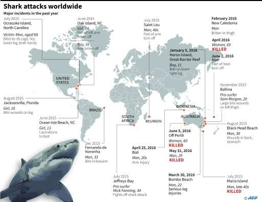 There were 98 shark attacks globally in 2015, the highest number ever recorded