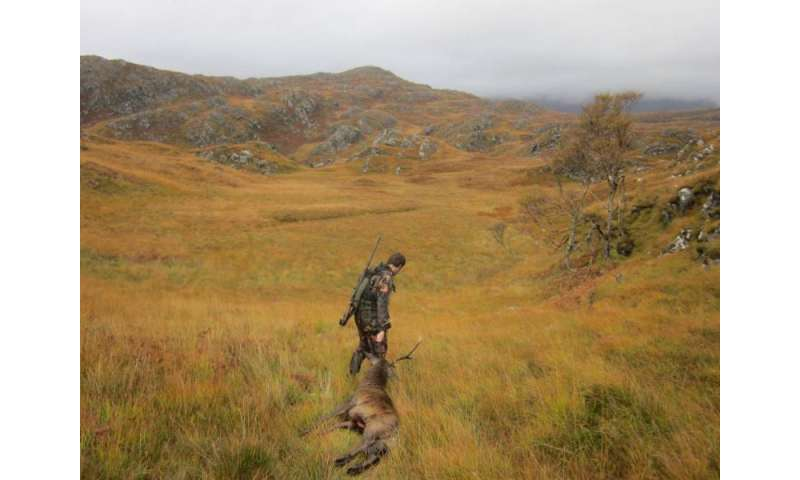 Time constraints and the competition determine a hunter's decision to shoot