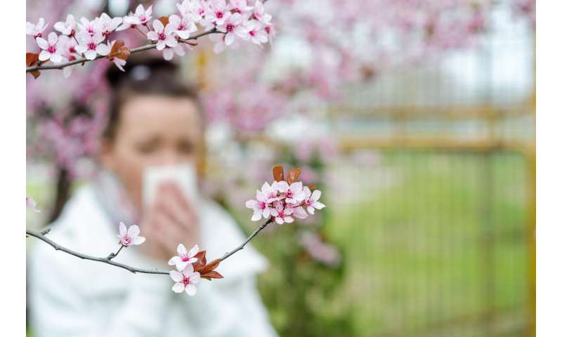 Tips for surviving this spring's allergy season