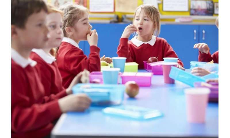 Too few school lunch boxes meet nutritional standards