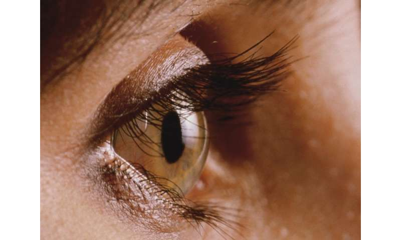 Treatment options reviewed for herpes simplex viral keratitis