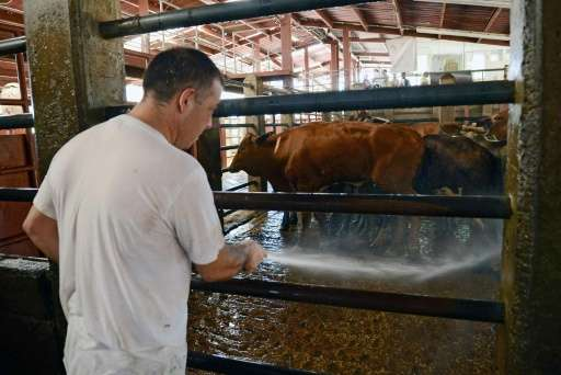 Two slaughterhouses in Costa Rico have united to find a solution to the environmental problem of treating their waste by transfo
