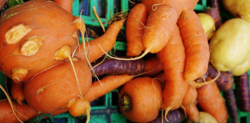 Ugly vegetables and fruit are making a comeback – here's why