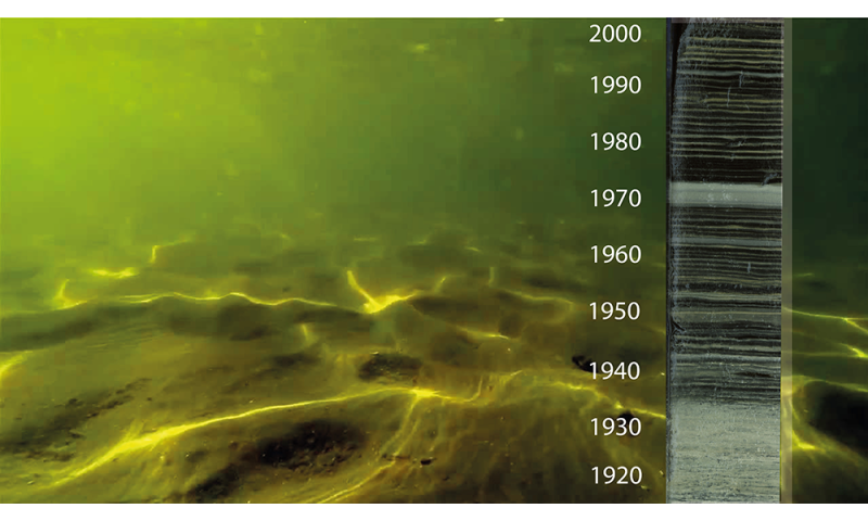 Urbanization: The historical cause of low oxygen conditions in European lakes