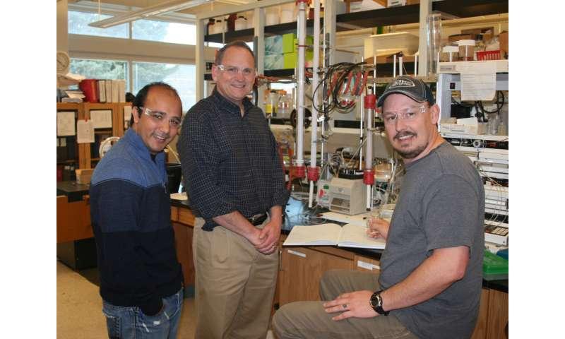 USU Biochemists Contribute to Light-Driven Dinitrogen Reduction Process