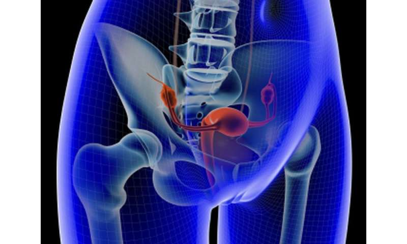 Vaginal brachytherapy cuts mortality in early uterine cancer