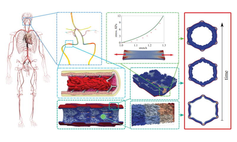 Virtual Artery concept