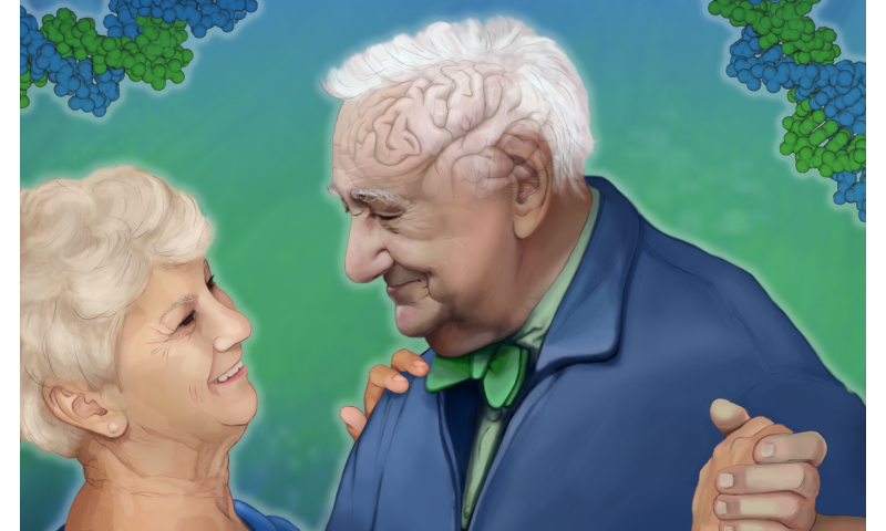 Wellderly study suggests link between cognitive decline genes and healthy aging