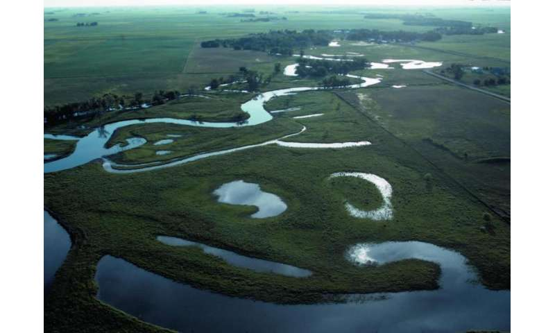 Wetland enhancement in Midwest could help reduce catastrophic floods of the future
