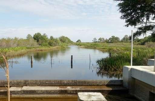Wetlands restored around Babcock Ranch in Punta Gorda, Florid