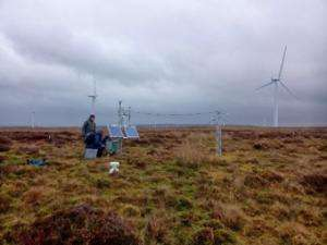 Windfarms generate microclimates with uncertain effects on peatland carbon store