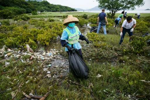 Workers and residents clean up refuse washed ashore at the top of a beach in Hong Kong on July 10, 2016